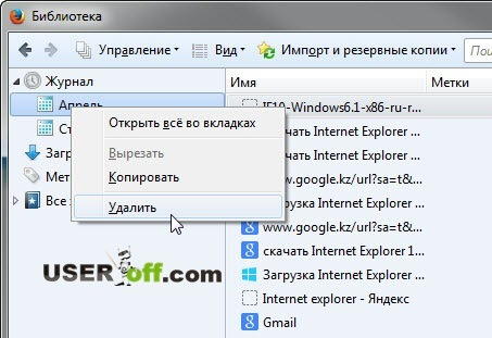 Удалить - историю в Mozilla Firefox